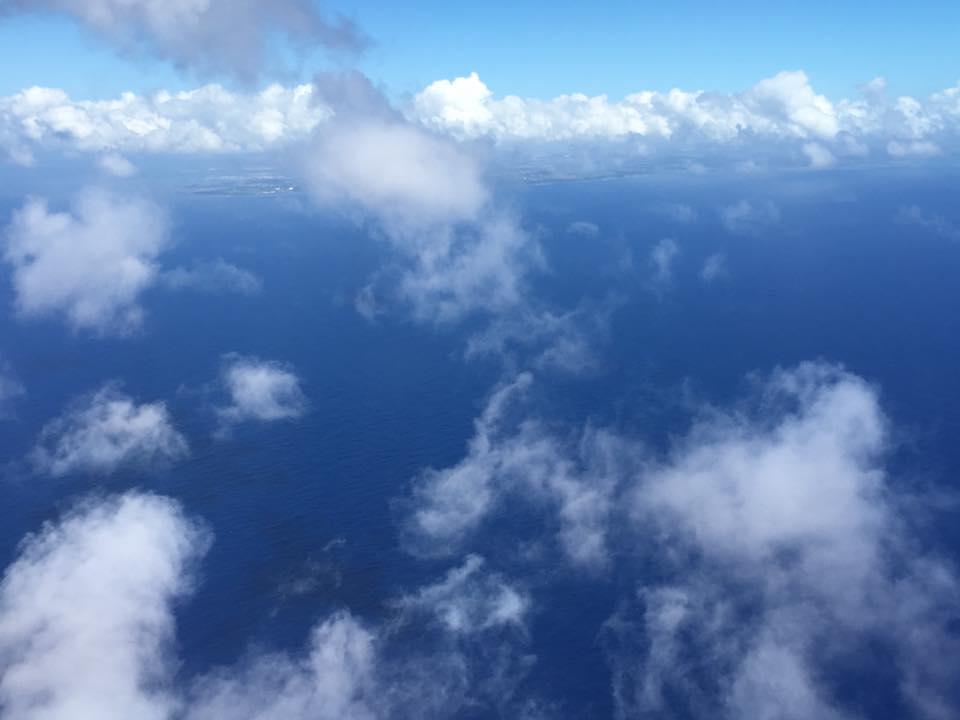 JALで空の旅