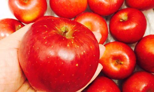 理想の林檎『安祈世』